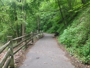 The Forbidden Road at Wissahickon Valley Park in Philly