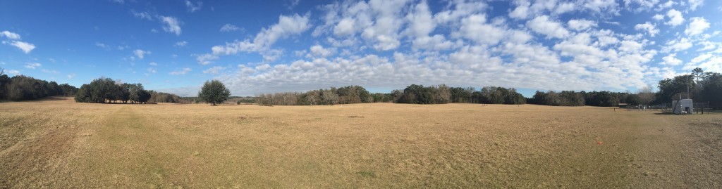 The Miccosukee Greenway. I had my workout this week on this field!